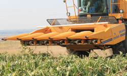 Oxbo 3000 Series Corn Head