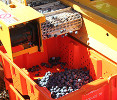 Korvan 8000 Blueberry Harvester