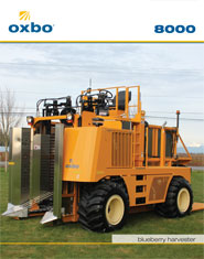 Oxbo 8000 blueberry harvester can deliver fresh market blueberries