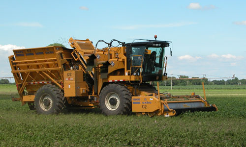 Oxbo 2470 Green Bean Harvester