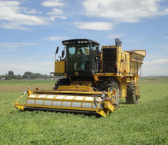 Oxbo 9630 Green Bean Harvester