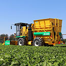 Oxbo 2430 Green Bean Harvester