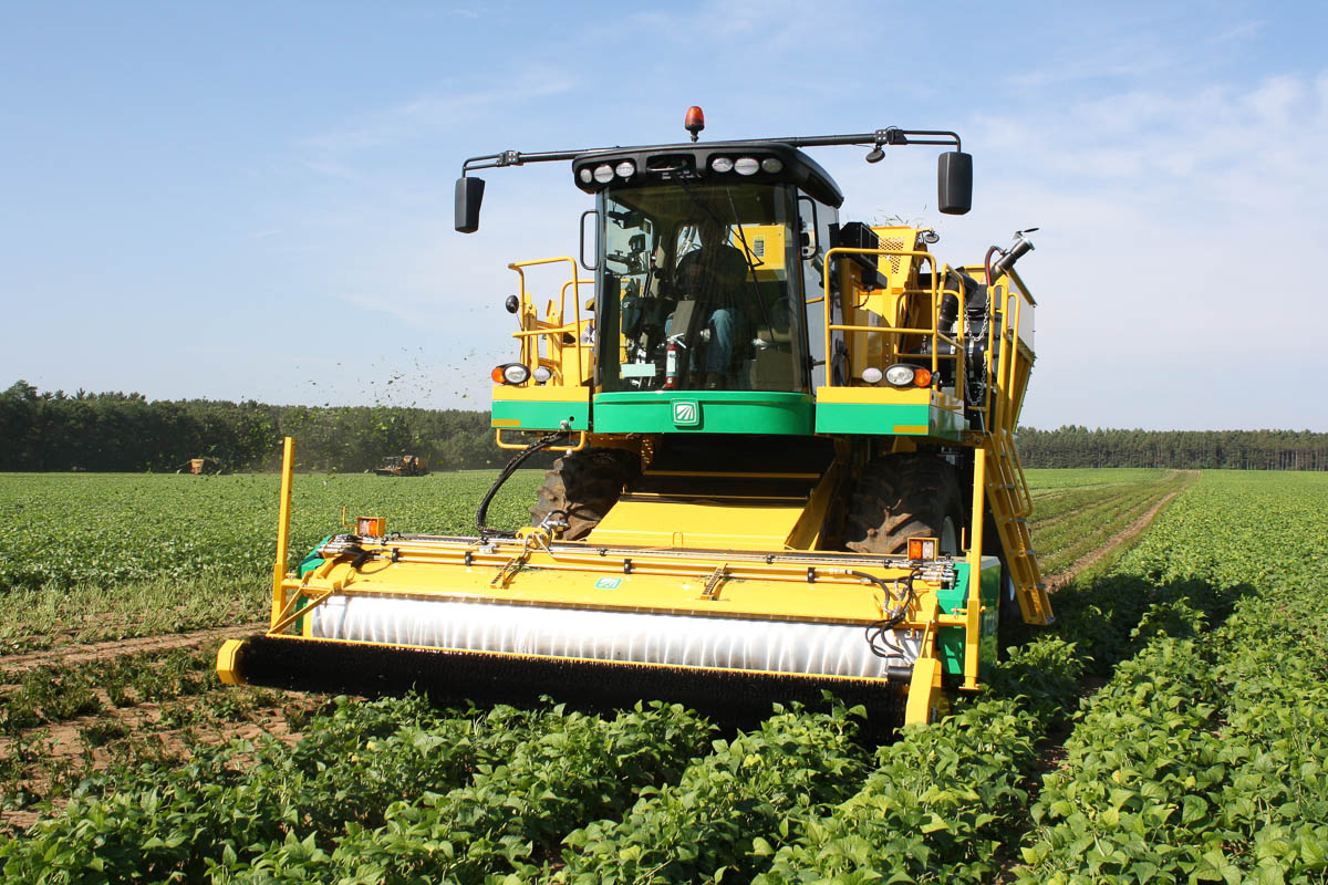 Oxbo 2475 Fresh Market Green Bean Harvester