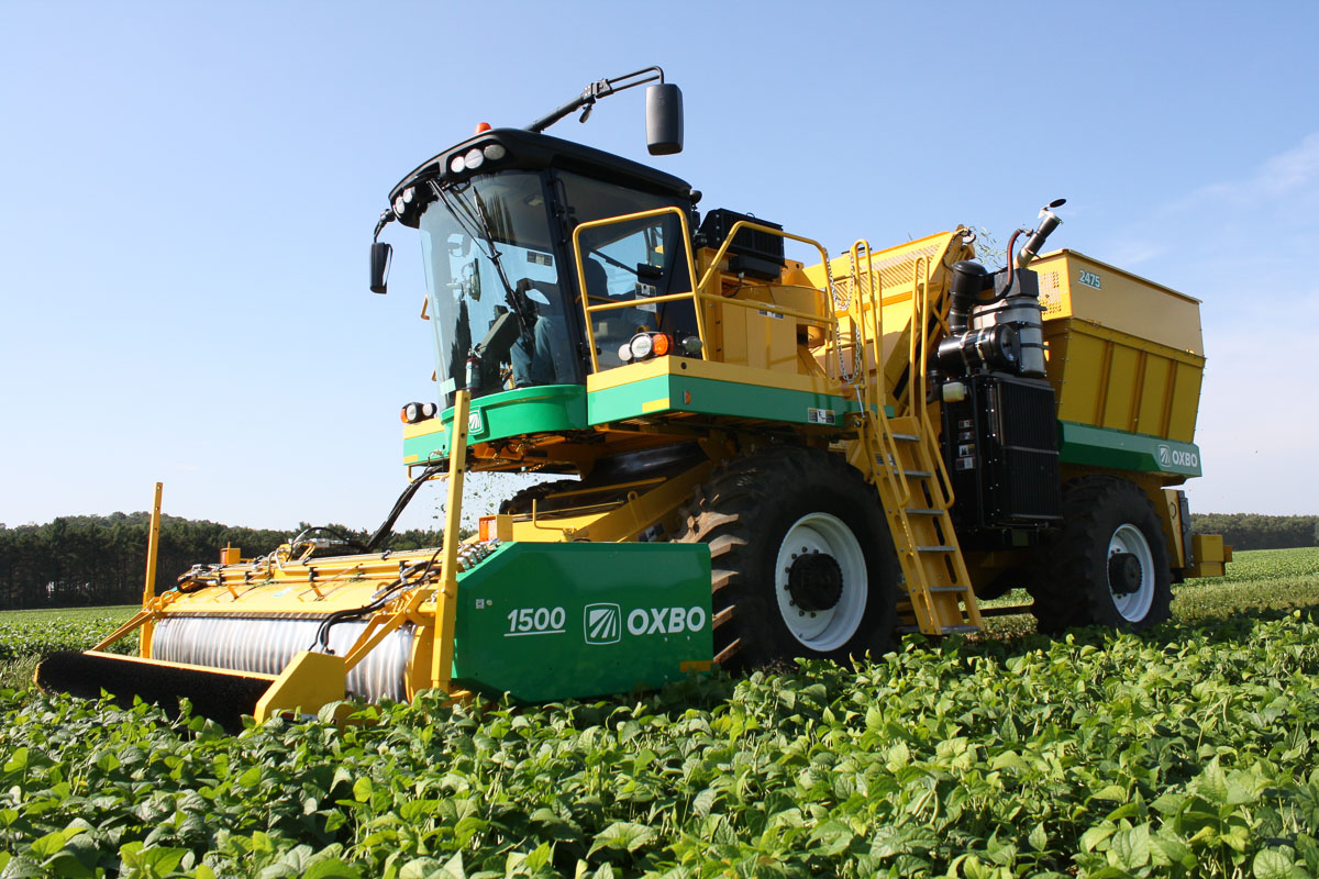 Oxbo VPCII Green Bean Picking System
