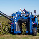 Oxbo 3209XL Korvan Grape Harvester