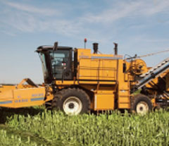 Oxbo 8430 Sweet Corn Harvester