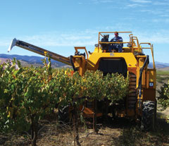 Oxbo 6220 Trunk Shaker Grape Harvester