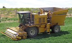 Oxbo 9630 Sugar Snap Pea Harvester