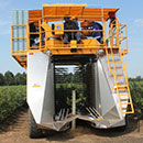 Oxbo 7440 Blueberry Harvester