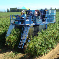 Oxbo 7420 Raspberry harvester, blueberry harvester