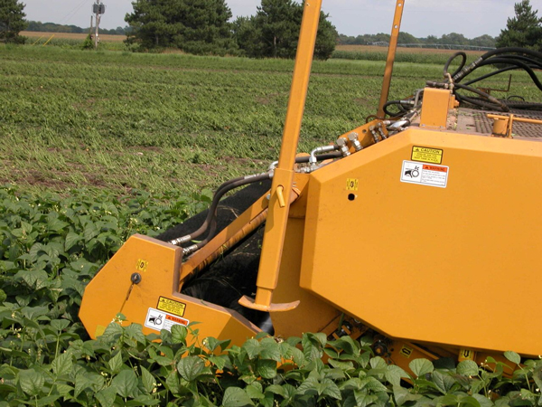 Oxbo VPC II Bean Harvesting Head