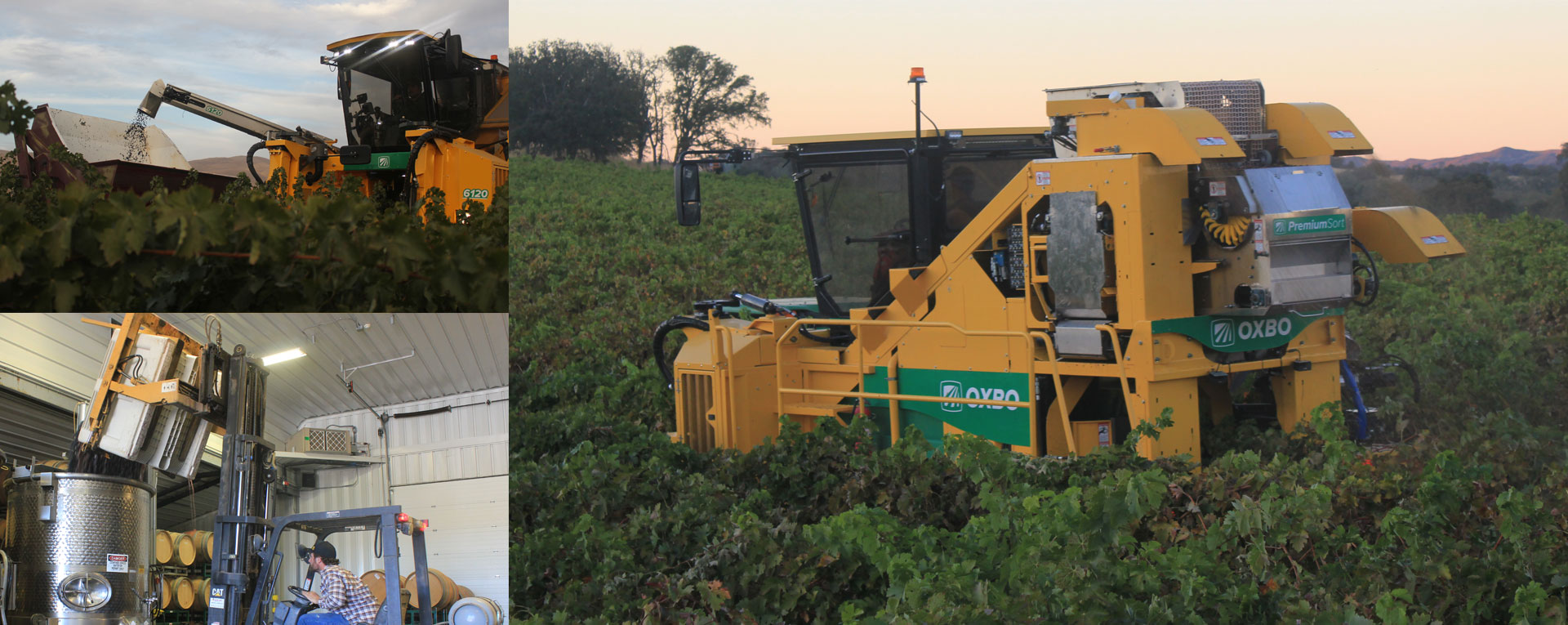 Oxbo International Corp Builds Equipment For Blueberries Citrus